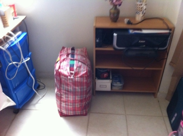 small bookcase and cargo bag.jpg